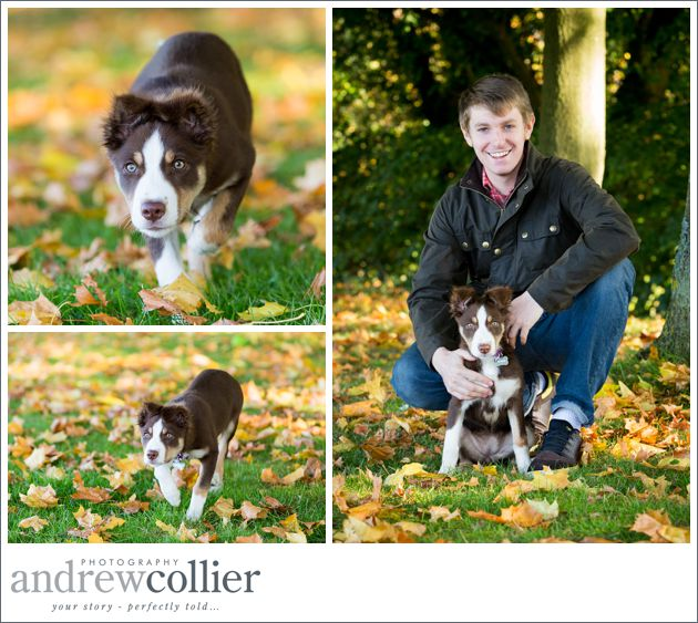Pet photographer Cheshire