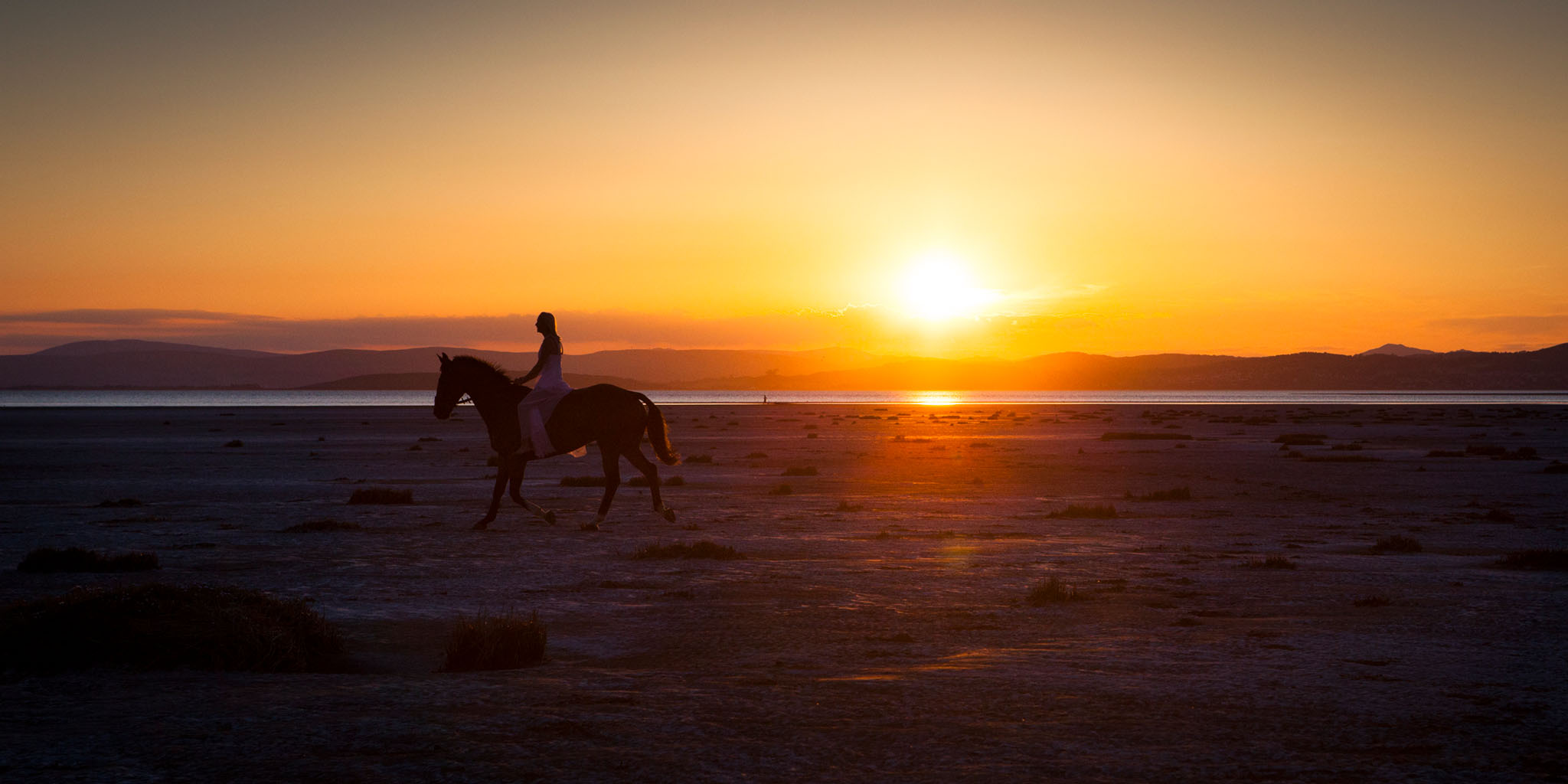 A portrait of a rider and her horse at sunset on the beach