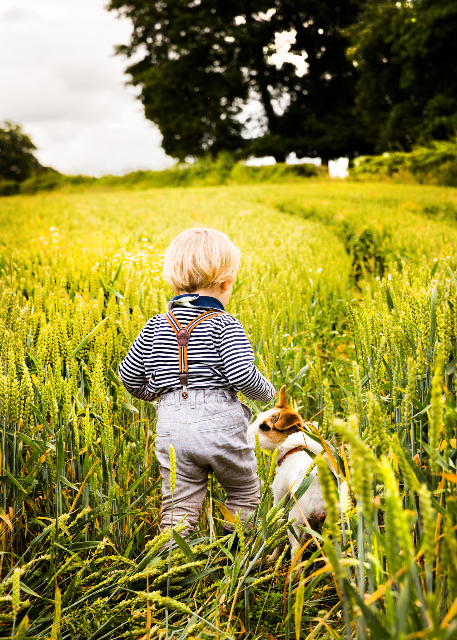 Family portrait photography of a little boy and his Jack Russell dog in Crewe, Cheshire