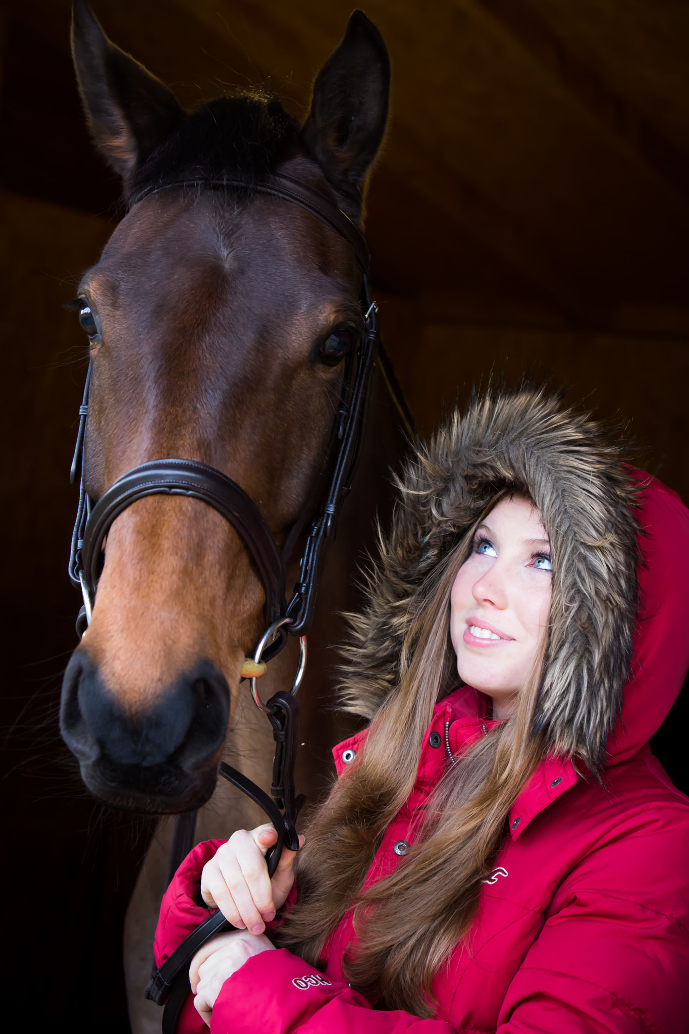 Equine portrait photograph showing the relationship between horse and owner taken near Holmes Chapel by Cheshire based horse photographer, Andrew Collier Photography