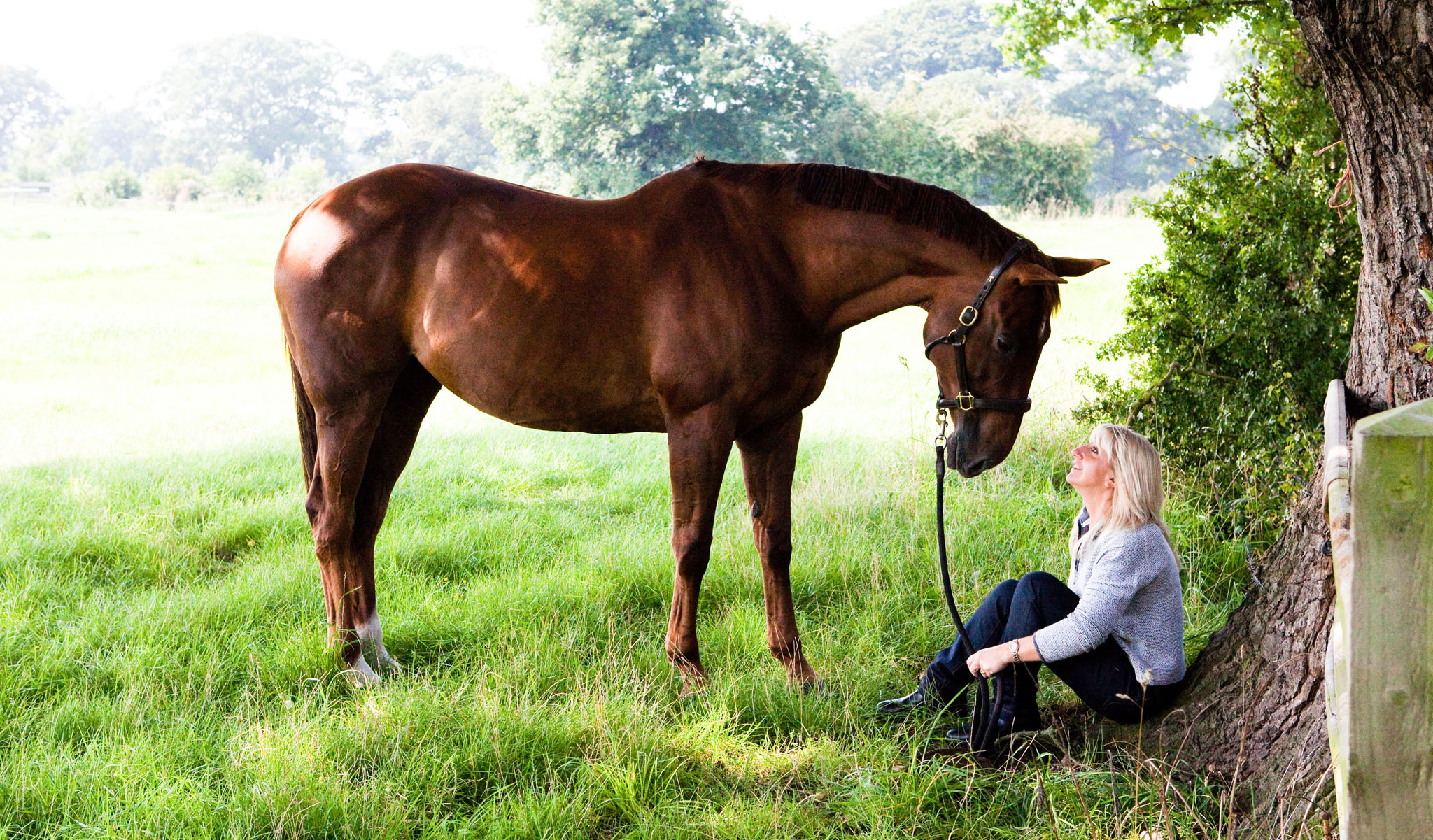 Equine portrait photograph of horse and owner in the shade of a tree near Chester by Cheshire based horse photographer, Andrew Collier Photography