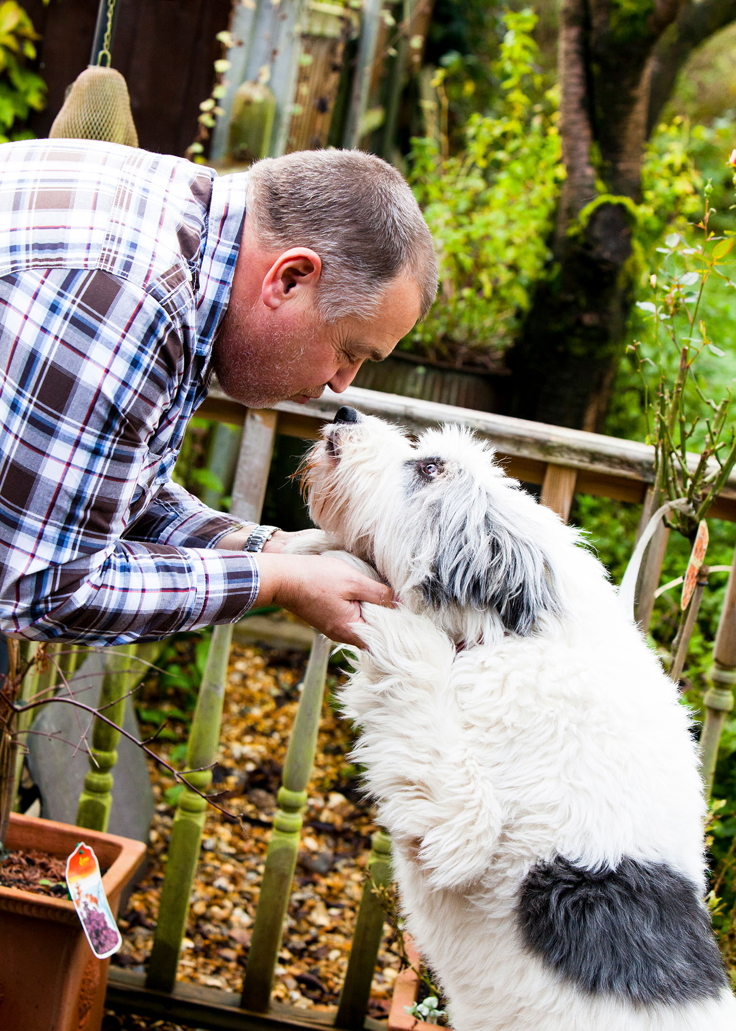 Pet portrait photography of one man and his dog near Westhoughton