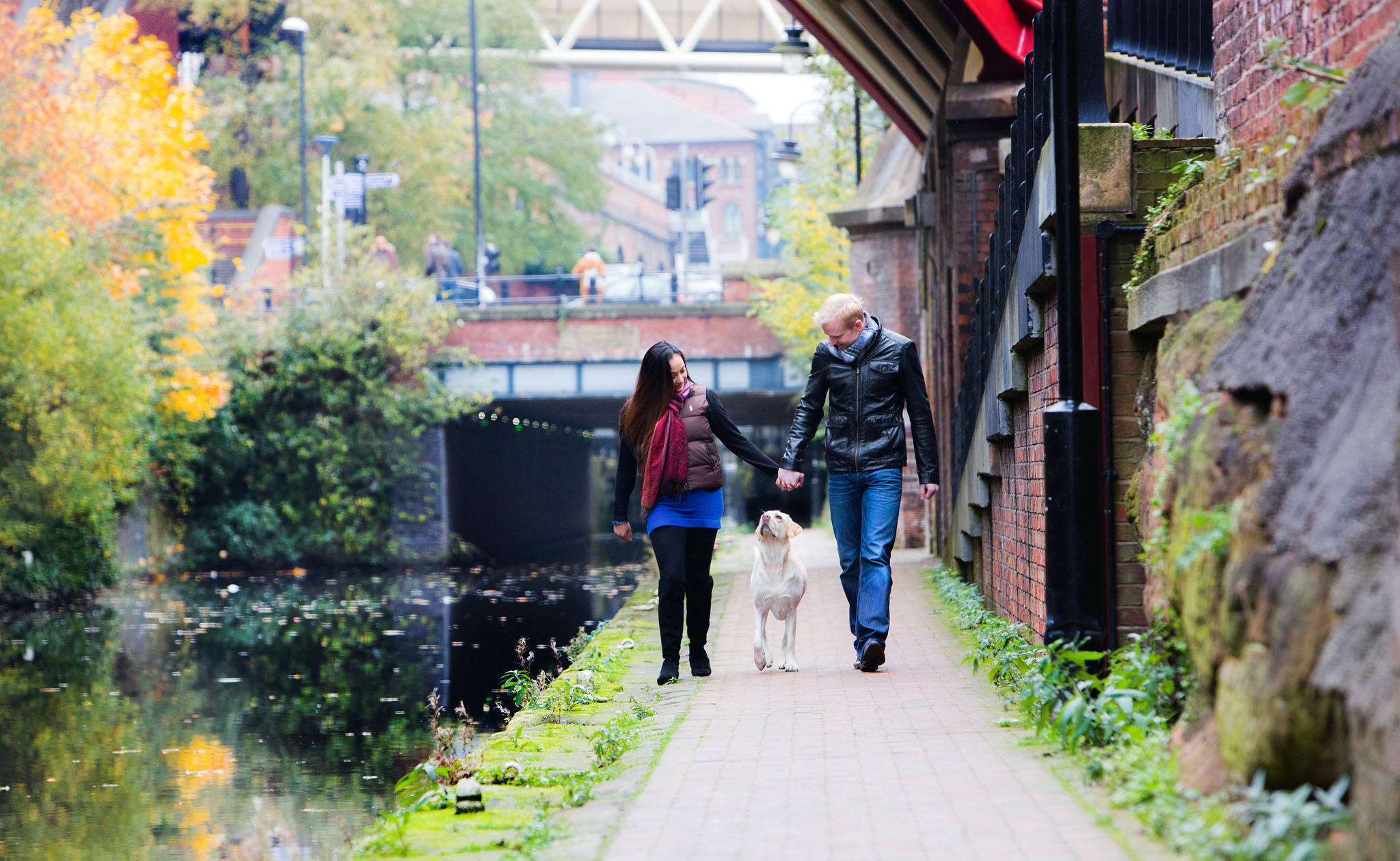 Urban pet portrait photography of a young golden Labrador walking by the canal with her owners in Castlefield, Manchester