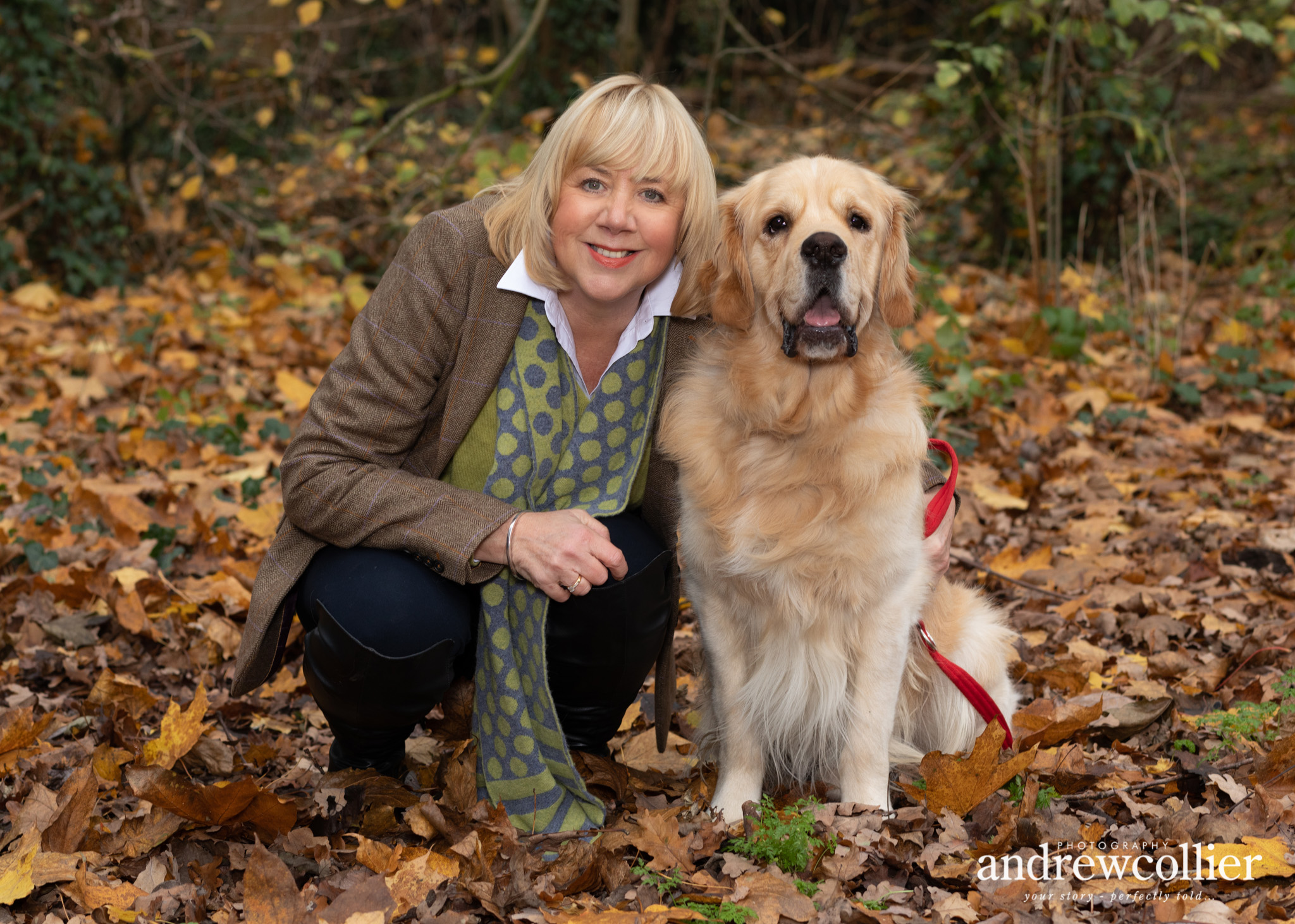 Portrait photograph of a Golden Retriever and his owner in parkland in Chester, Cheshire