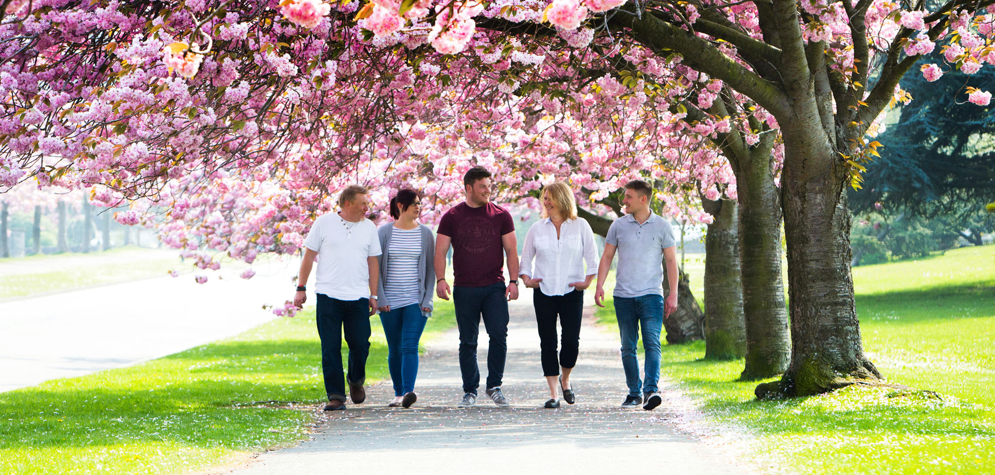 family portrait of family walking under cherry blossom trees by Andrew Collier, Warrington, Cheshire based family portrait photographer